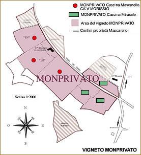monprivato_cartina_tumb