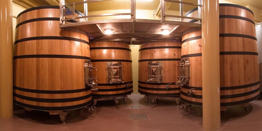 f2_tinos_fermentacion