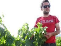 bodegas-olivier-riviere-vinos