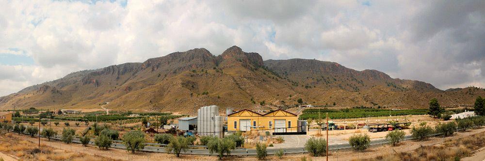 panoramica_bodegas_salzillo-compressor
