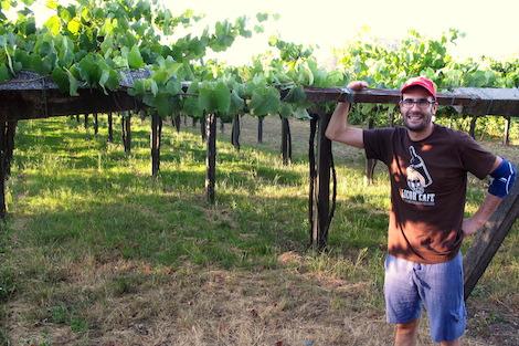 167_0_1_Albamar_Vines
